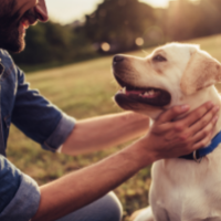 Wednesday, June 23 at 7:00 pm: Animal Communication with Judith Wade